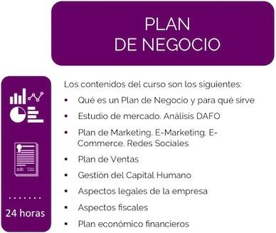 Curso Plan de Negocio Lauburu Consulting
