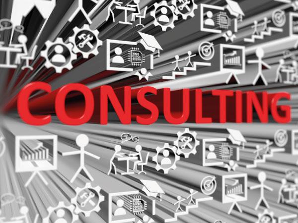 Servicios de Consultoría Organizacional en Vitoria-Gasteiz Lauburu Consulting